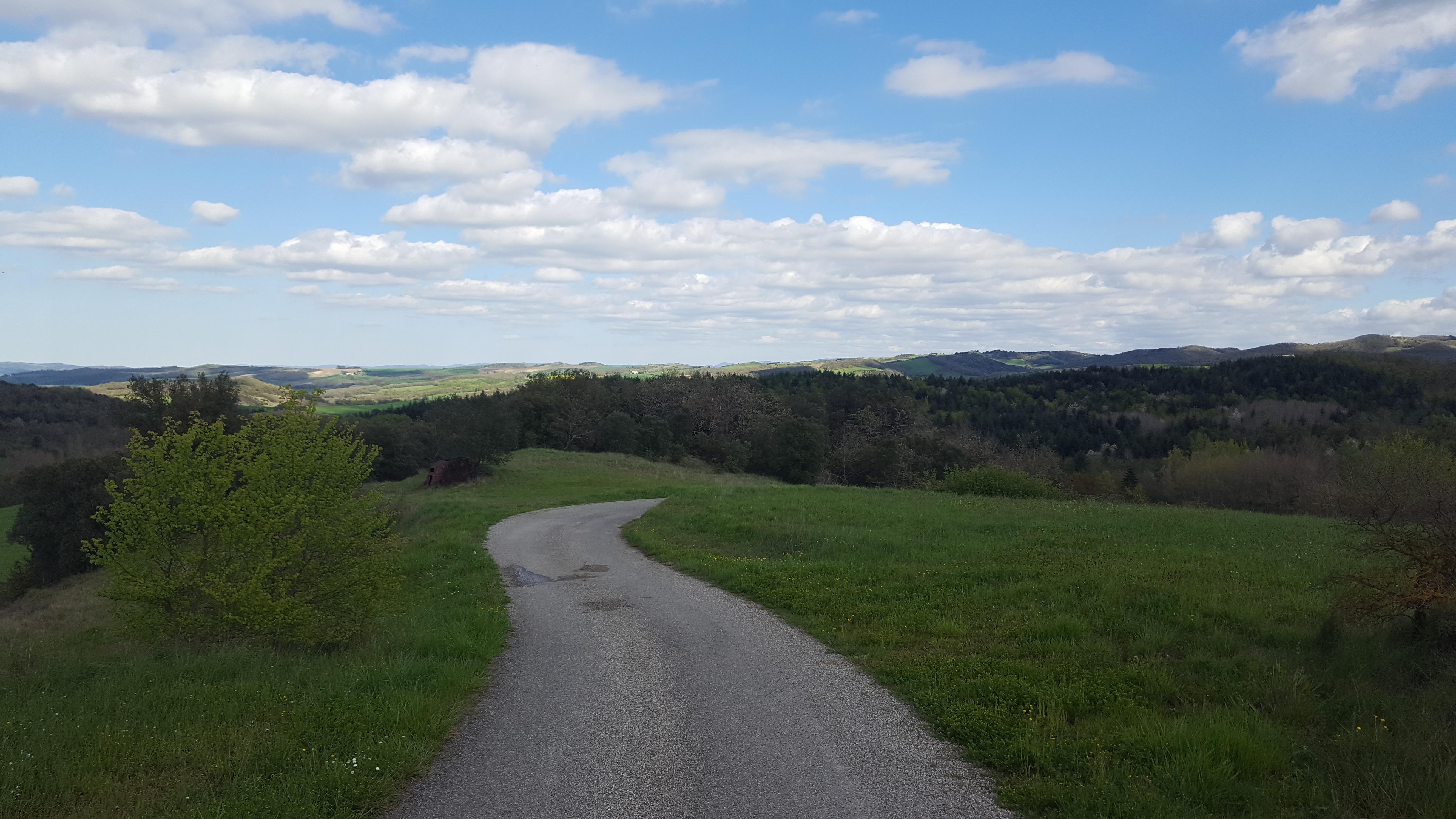 Le chemin vers la maison