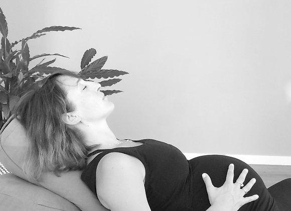 gravid 3. trimester