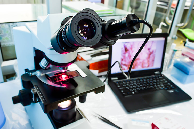 Microscope that was connected with camera at eyepiece into computer, background of laborat