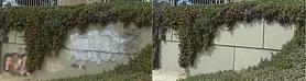 cleanwolf_graffiti.png