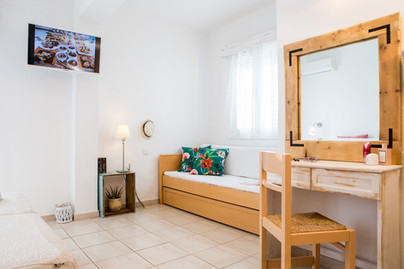 wooden mirror,sofa-bed,plasma  tv