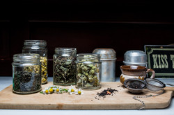 herbs for all times