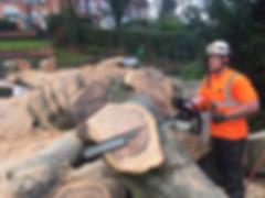Tree surgeon Birmingham, Treescape UK