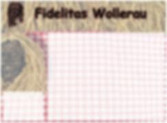 Fidelitas Wollerau