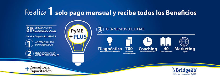 Pyme Plus banner Promocion 2016 (2) .jpg