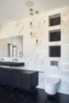 whitegates_project_toilet.JPG