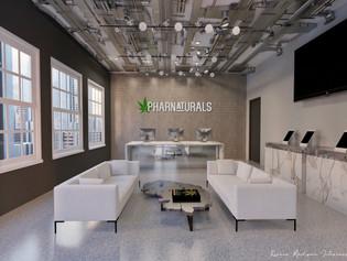 CBD Retailer   Interior Rendering   Rich