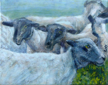 Shorn the Sheep  - SOLD