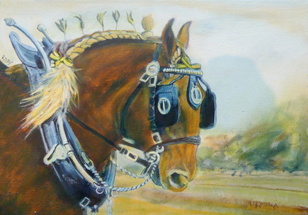 Earl, the Suffolk Punch - SOLD