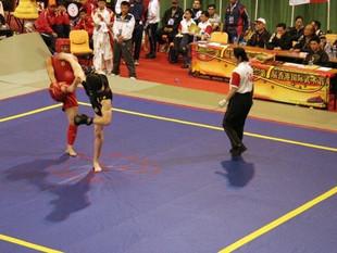 Le 1er cours de SANDA (boxe chinoise) aura lieu le mercredi 16 septembre !