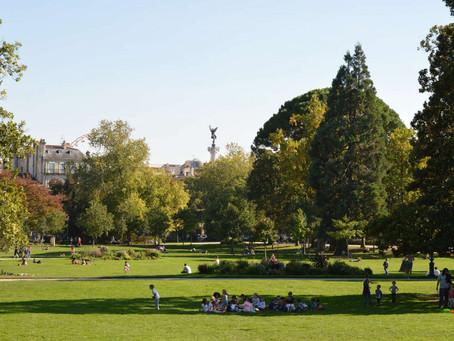 NOUVEAUTÉ : Cours de tai chi chuan au jardin public tous les jeudis !!