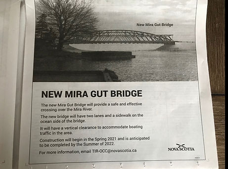 mira gut bridge.jpg
