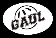gaul league logo TN.png