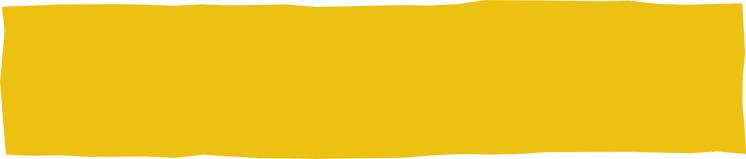 Yellow Rectangle.png