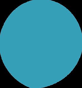 Blue Circle.png