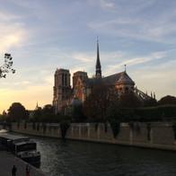 巴黎聖母院 Cathédrale Notre-Dame de Paris