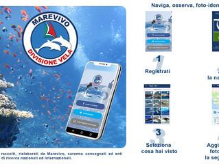"""Scarica """"Occhio al mare"""": l'app per navigare consapevolmente!"""
