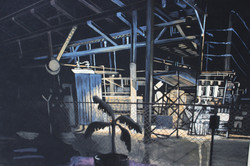 Detail: Study for Power Plants