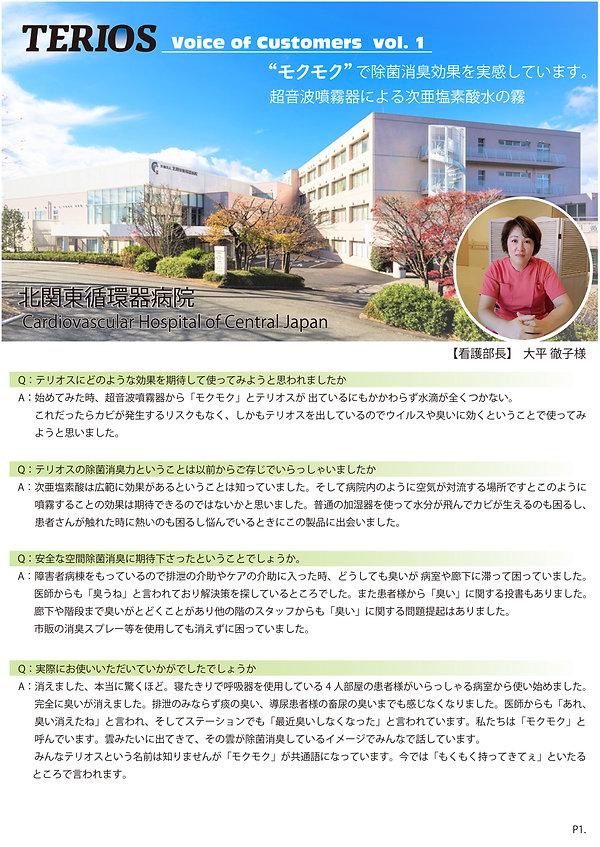 1【ア】TERIOS通信Vor1-P1.jpg