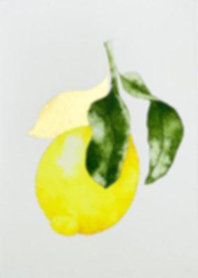 Gold Leaf recto.jpg