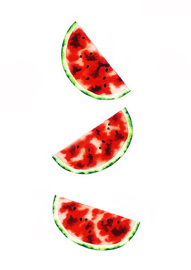 Watermelon Triptych - Limited Edition Print