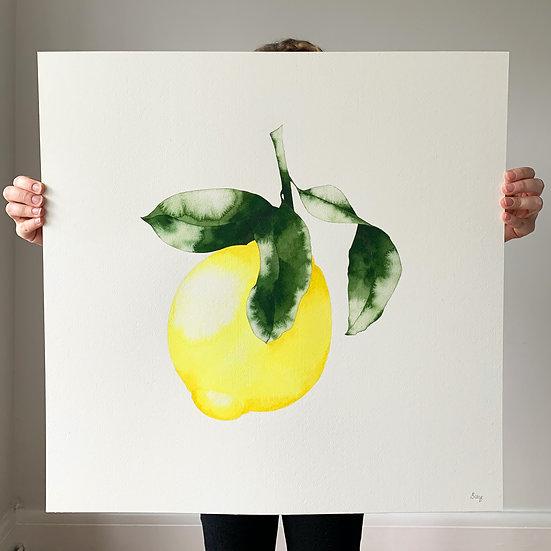 Amalfi Lemon Grande
