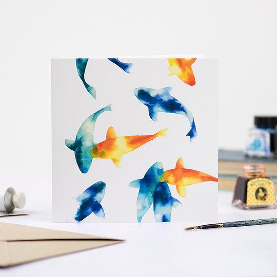 Swimming in colour