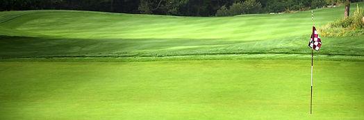 Golf Placeholder.jpg