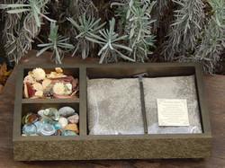 Jardim Zen Luxo 2 divisorias
