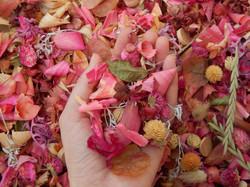 Potpourri Pink