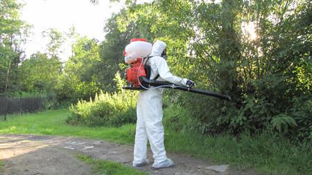 komarci zeshs