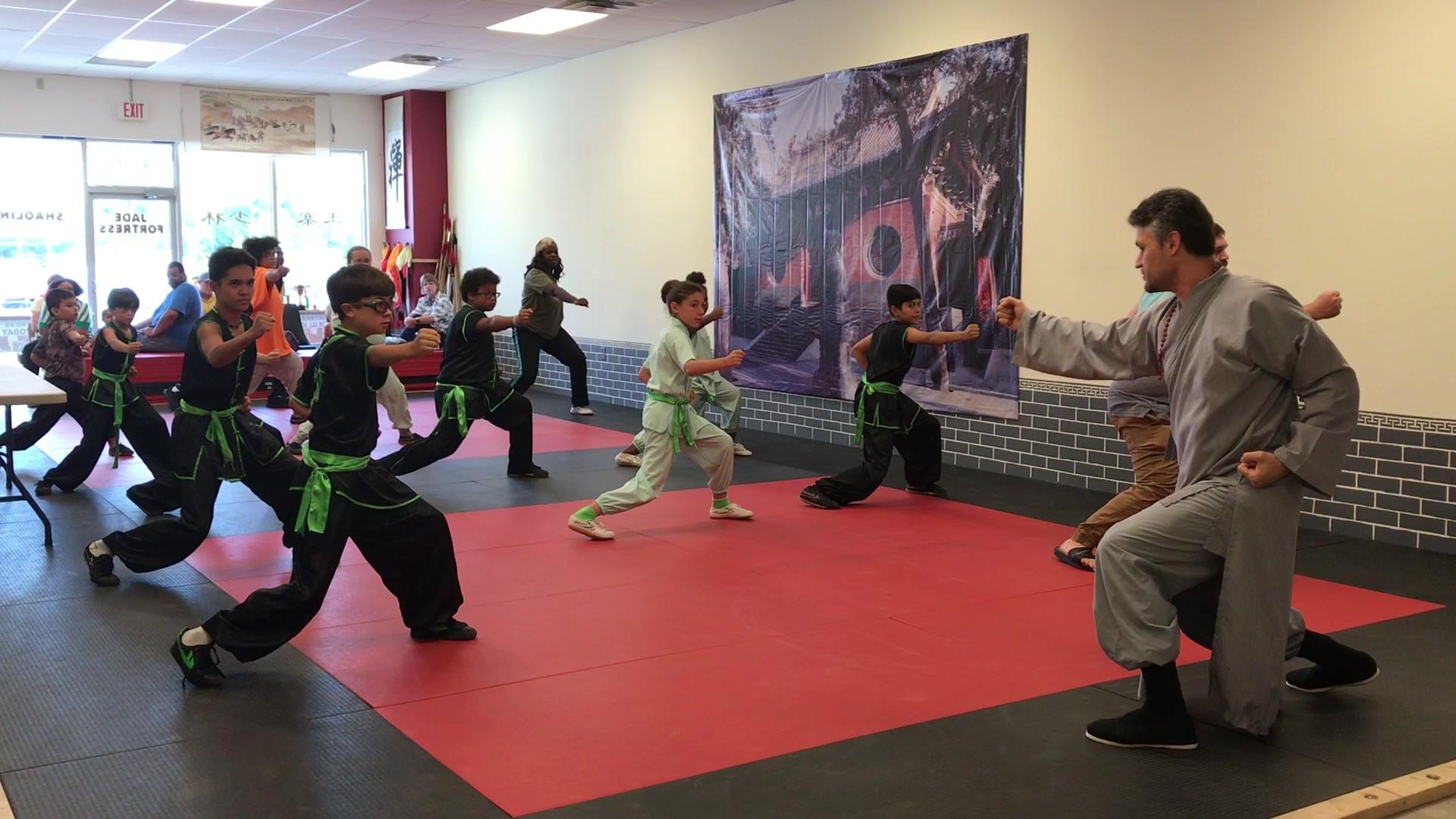 1st Shaolin Punch Drill.MOV