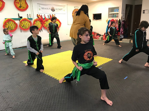 1 hour Shaolin Training Group Session up to 10-20 participants