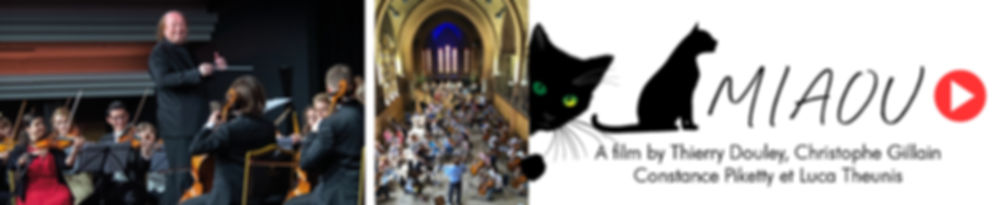 banner movie miaou.jpg