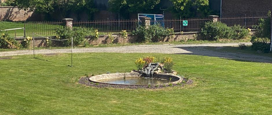 New pond in school