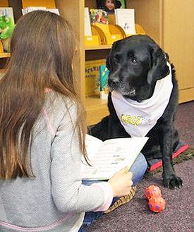 Der Hund hört dem Mädchen beim Lesen zu.