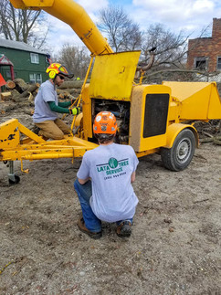 Lata Tree Service teamwork