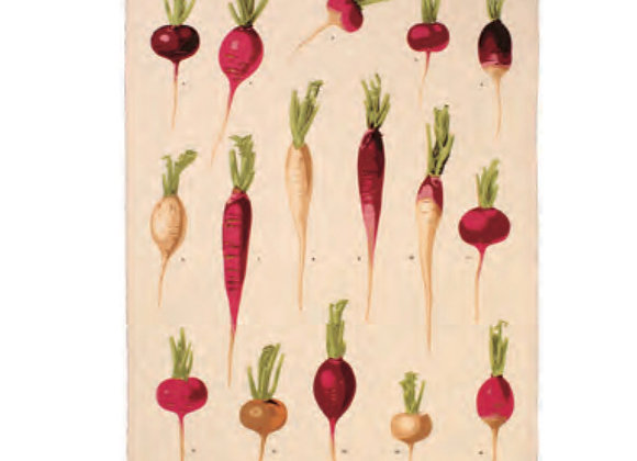 022RDS Radishes Cotton Tea Towel By Ulster Weavers