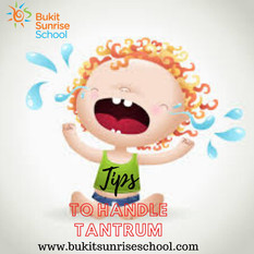 Tantrum in Toddlers : How To Deal With It