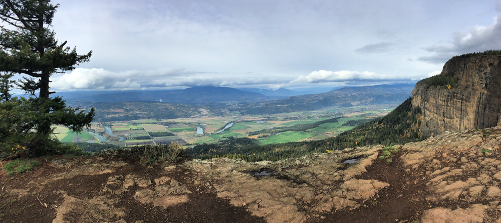 View from Enderby Cliffs