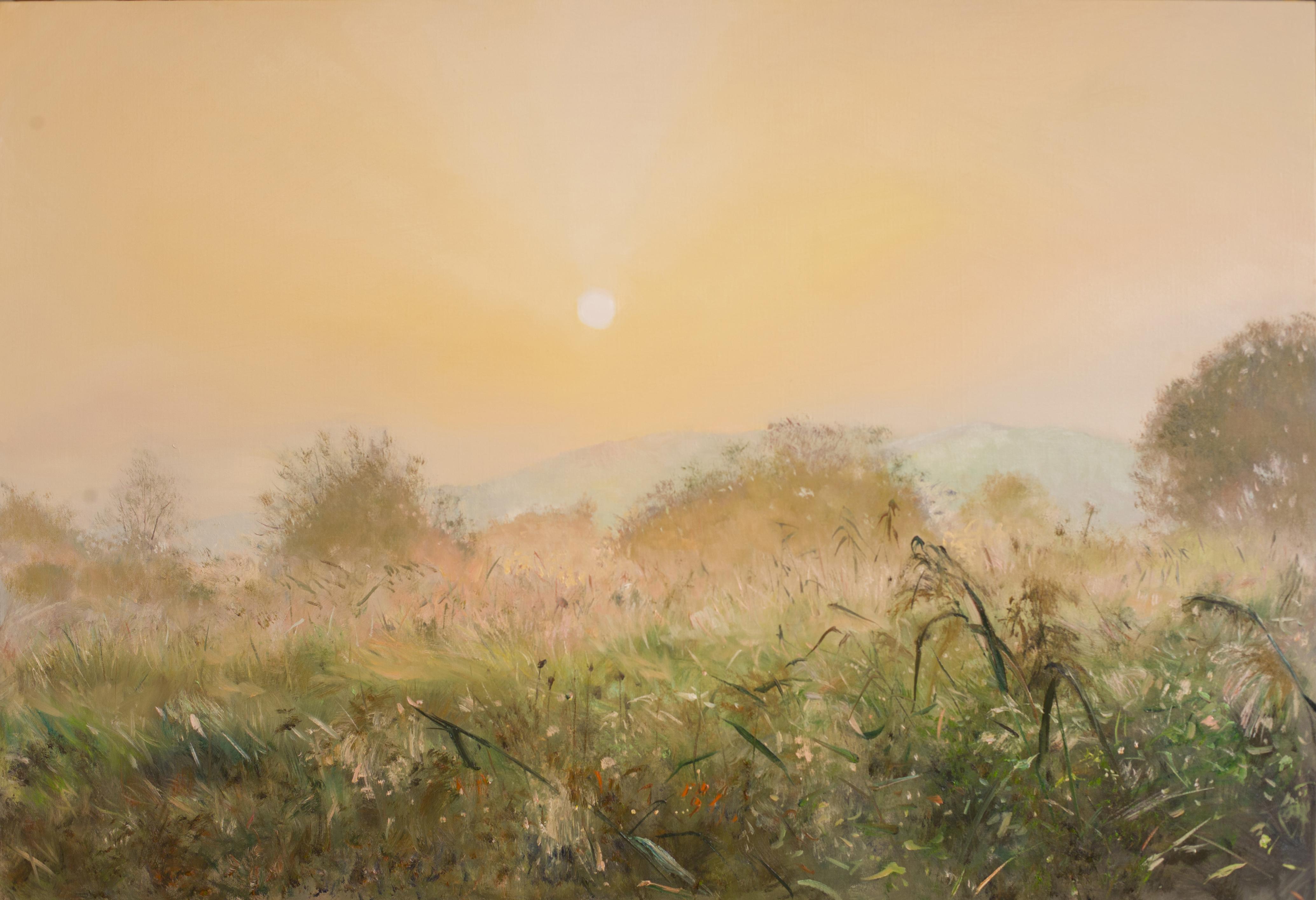 우포의 아침 116 8x80 3 Oil on canvas 2014