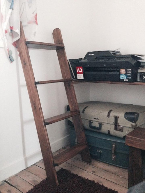 Small Decorative Wooden Ladder with Shelves