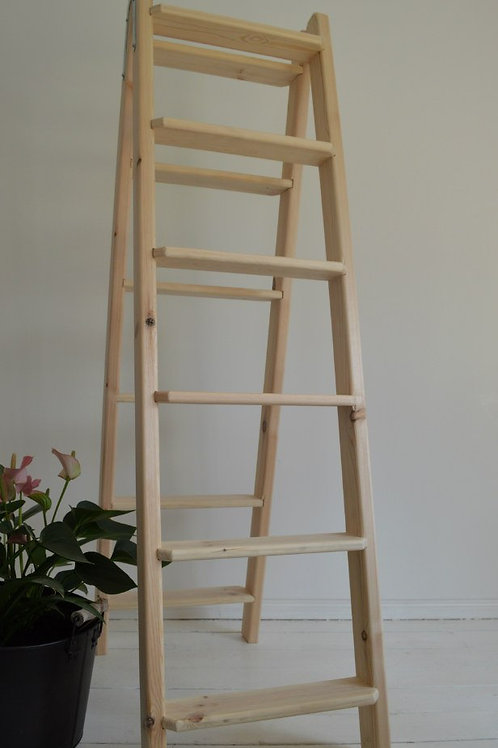Massive Double Ladder