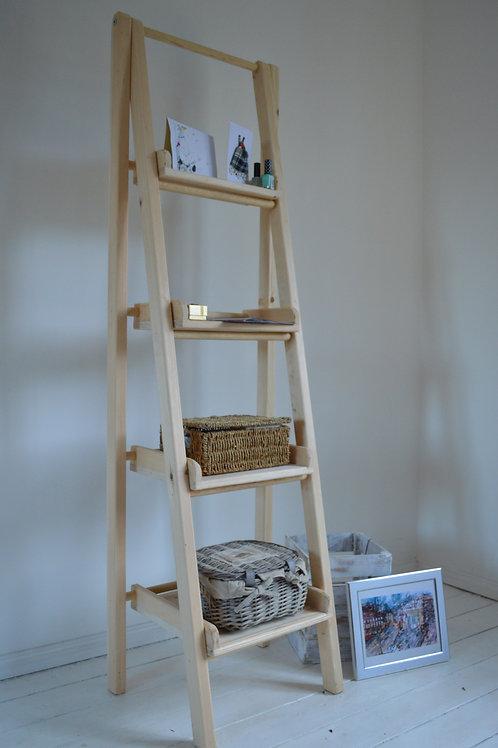 Double Ladder & Shelves