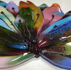 Rainbow Agave (detail)