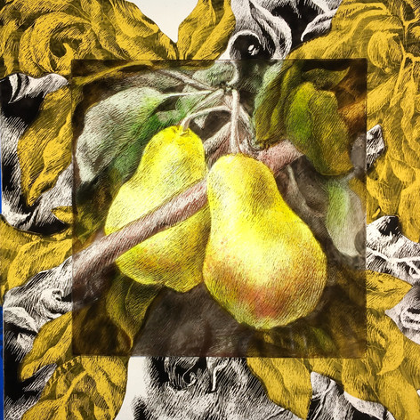 Yellow Pears (SOLD)