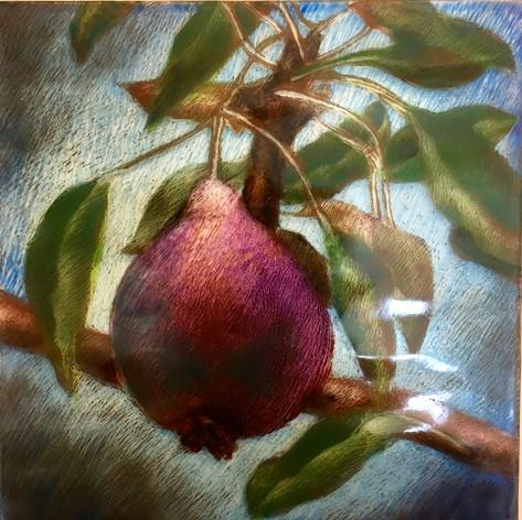 Luscious Pear (detail) (SOLD)