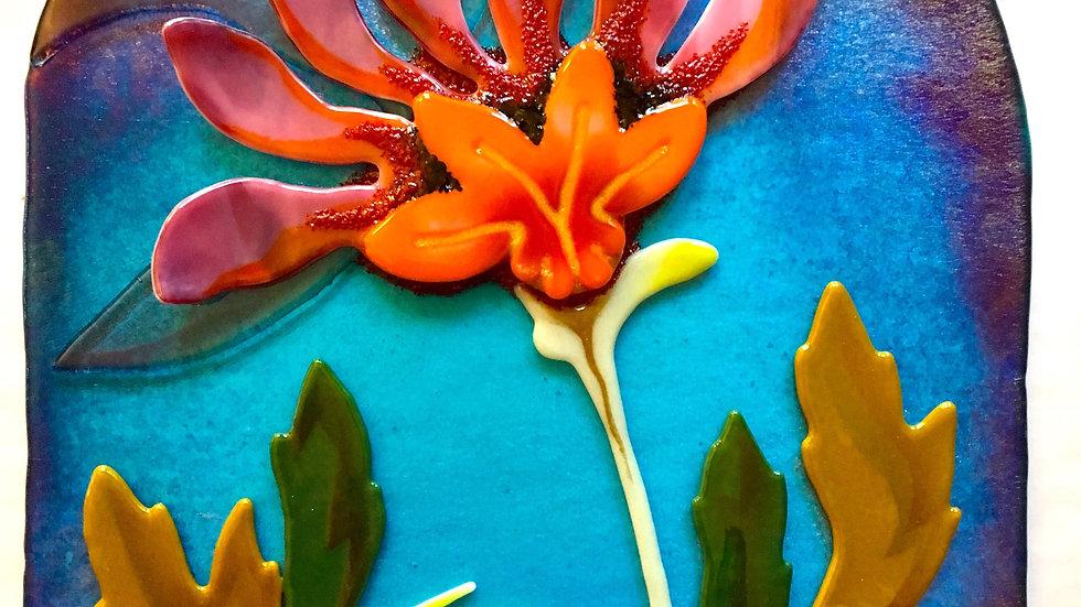 Blue Sky Lily