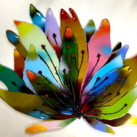 Rainbow Agave (AVAILABLE)