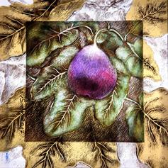 Purple Fig